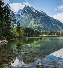 Hintersee und Hochkalter - expl..2 (alpenbild.de) Tags: wood morning cloud lake alps reflection tree nature water clouds forest river landscape bayern bavaria see nationalpark spring woods wasser natur wolke wolken alpen fluss landschaft wald reflexion morgen spiegelung baum frhling topaz morgens ramsau bgl watzmann berchtesgadenerland 200fav nationalparkberchtesgaden d800e nikond800e