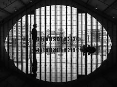 horizon field // deichtorhallen, hamburg (pamela ross) Tags: shadow silhouette pen mirror hamburg olympus ep1 antonygormley deichtorhallen horizonfield