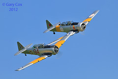 Harvard Pair (Meliss&Gary, (Gary Cox)) Tags: sky sun aircraft aviation legends cox duxford gary raf airshows aerobatics iwm