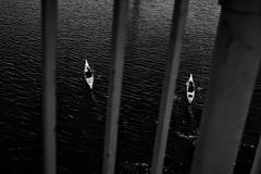 Crossing the bridge (Joris_Louwes) Tags: street blackandwhite canada lines sport composition contrast kayak britishcolumbia victoria leisure minimalism