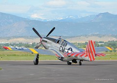 COL_2689 (Bluedharma) Tags: plane airplane colorado aircraft loveland mustang 1943 2010 razorback fnl p51 ftcollins militaryaircraft collingsfoundation bettyjane wingsoffreedom p51c aviationphotography tp51c coloradophotographer thecollingsfoundation bluedharma kfnl p51cmustang n251mx p51c10 coloradoshooter wingsoffreedomtour2010 1943northamericanp51c10cn42103293