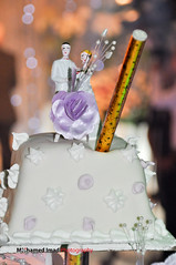 Weam abdeen wedding cake (Mohamed Imad Photography) Tags: wedding cake weam abdeen