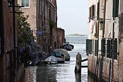 piccoli angolini veneziani (Valina*Snowflake) Tags: venice friend mare lagoon barche ponte laguna simona venezia ghetto simo amica sanmarco gondole scorci canali angoli fondamentanuove simola cartelligialli