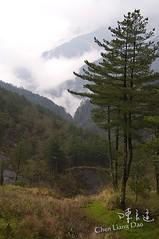 DAO-04458 南部橫貫公路 玉山山脈 雲霧
