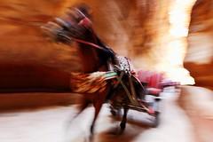 """Runaway Horse!"" -- Petra, Jordan (TravelsWithDan) Tags: street horse carriage candid ngc petra canyon jordan runaway runawayhorse worldtrekker"
