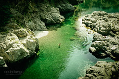 Jade Water (Cedpics) Tags: summer green nature water rock creek quiet peace calm zen nz