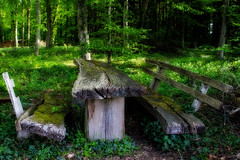 Breakfast at Tiffany's (MH *) Tags: old light green forest bench wasser timber magic bank lordoftherings grn tisch holz wald picknick denzlingen 21mmlimited pentaxk3