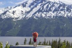 Rita. Alaska, summer 2016