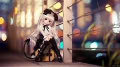 Yokohama Night  (Haku1923) Tags: doll yokohama dd dollfie mdd dollfiedream