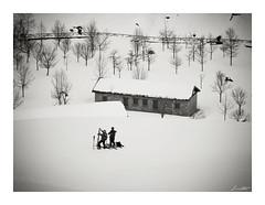 Postal de Invierno (Jaime Martin Fotografia) Tags: winter bw snow blancoynegro nature asturias