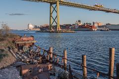 SS Daisy (Wen879) Tags: city canada rotting boats novascotia decay dartmouth halifaxharbour sunkenship macdonaldbridge canon24105mm canon70d