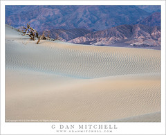 Dunes and Mountains, Twilight (G Dan Mitchell) Tags: california park usa mountains texture nature america landscape evening twilight sand desert dunes north national deathvalley