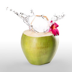 Coconut (Patrick Foto ;)) Tags: blue summer food white motion black flower tree green nature water fruit studio frozen milk healthy shot drink coconut juice background tasty nobody drop fresh spray palm cocktail coco tropical flowing copyspace nut splash liquid isolated pouring freshness splashing