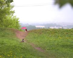 Duck hunt (Varvara_R) Tags: green fun spring ducks