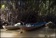 Barcas (Mar Santorio) Tags: rio d50 river nikon vietnam saigon mekong hochiminh