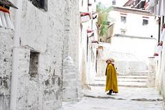 20160607-DSC_6148 (Jewel Tseng) Tags:  tibet lama