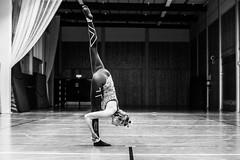 Hillevi2 (CoreyWebster) Tags: gymnastics lugi teamgym lugi18