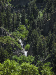Joined By The Hip (LeBaroDea (Harnessing my fears...)) Tags: forest wasatch lebarodea upperfalls provocanyon utah green vivid waterfall cascade cascademountain pine limestone confluence step lush rock cliff layer creek stream