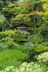 In the garden of Nezu Museum (sevenbrane) Tags: nezumuseum japanesegarden teahouse