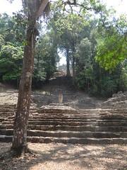 DSC07977 (tomboy501) Tags: mexico maya guatemala mayanruins chiapas yaxchilan usumacintariver