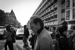street man sunglasses zebra profil győr napszemüveg férfi gyalogátkelő