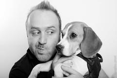jerome & fleche (beaglou prod) Tags: dog chien france beagle animal canon photography jerome photographe fleche chelles beaglou beaglouprod delarosedesgatines