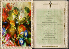 evangelho según San Mateo 8,5-17. Obra Padre Cotallo