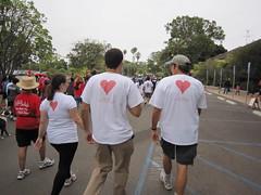 Heart Walk 2011 (3)