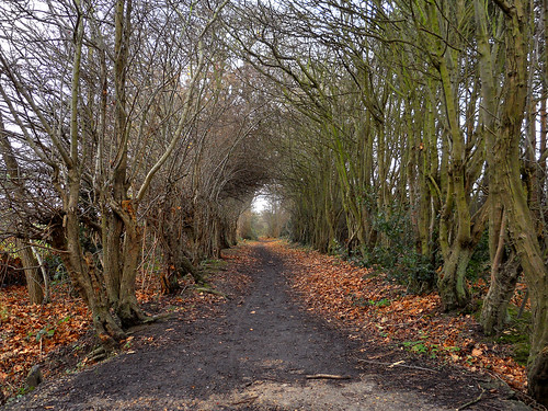 Footpath - Denham UK