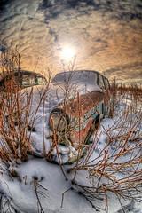 In My Bones (Wayne Stadler Photography) Tags: auto old winter snow canada cold abandoned car metal rural junk rust seasons decay grunge rusty farmland alberta scrap wrecked dilapidated