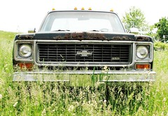 CHEYENNE IN THE WEEDS (richie 59) Tags: usa chevrolet abandoned overgrown rural america truck outside us spring rust automobile gm country rusty pickup pickuptruck headlights grill faded chevy chrome 350 rusted vehicle c20 oldtruck crusty cheyenne obsolete corroded 2012 chevys wornout rustytruck wallkill frontend generalmotors chevytruck 2door rustedout motorvehicles junktruck fadedpaint oldchevytruck chevrolettruck ulstercounty oldchevy rustyoldtruck twodoor oldpickuptruck americantruck abandonedtruck midhudsonvalley chevytrucks ulstercountyny gmtruck rustychevy chevycheyenne ustruck oldrustytruck greytruck chevypickuptruck chevroletpickuptruck wallkillny longabandoned rustychevytruck americanpickuptruck richie59 may2012 1970struck townofshawangunk cheyenne20 may262012 townofshawangunkny