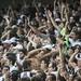 Atlético x Corinthians 27.05.2012
