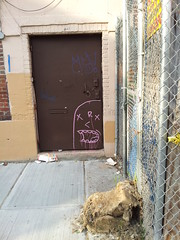 Purple (Choice Royce) Tags: nyc brooklyn purple roycebannon tags kink roycer