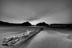 Emerging Light (Nick Twyford) Tags: sea newzealand sky blackandwhite cloud texture beach monochrome sunrise landscape coast sand nikon wideangle auckland filter lee northisland westcoast whatipu 1024mm 06gnd 12gnd
