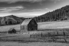 Teanaway Barn (NW Vagabond) Tags: bw white black barn landscape farm washingtonstate hdr oldwest teanaway