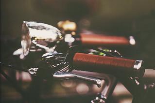 Parc La Fontaine's bike