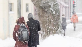 339 winter scene