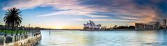 O P E R A     H O U S E (Kash Khastoui) Tags: sky house seascape k sunrise canon 50mm opera pano sydney australia panaromic f12 6d kash khashayar khastoui