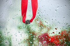 Gift for a photographer (allejandrine) Tags: window glass rain drops stillife photocamera