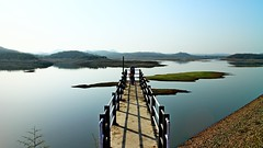 Beautiful Life: A bridge to nowhere  Lake . H . Lago .  (Gopi Sutar) Tags: morning bridge blue summer sky india lake tree green nature water grass forest canon landscape lago eos daylight nationalpark kid child wildlife lion objects safari clear jungle narnia land aslan sanctuary gujarat gir asiaticlion h beautifullife pantheraleopersica mirrorless abridgetonowhere  canoneosm