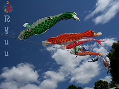 koinobori at Ueno zoo (Ryuu) Tags: blue sky white fish tree art japan clouds composition japanese tokyo colorful heaven wind decoration floating line koi tradition koifish koinobori childrensday lowpov paperfish uenozooentrance