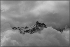 In un mare di panna montata - In a sea of whipped cream (Matteo Bersani) Tags: clouds nuvole wildlife lombardia a58 valmalenco montagnamountain paesaggiolandscape sonyalphaitalia naturanaturalmentenature bwbwbnblackwhitebianconero