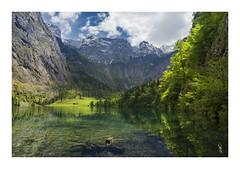 P5170297fb (Ja) Tags: nature germany landscape spring olympus zuiko knigssee krajina 1240pro em5ii