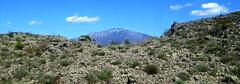 Mount Etna. (jenichesney57) Tags: blue sky sun snow clouds volcano spring mediterranean view mount vegetation sicily etna lavaflow