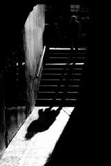 Beware the unwary (BazM:Photog.......:-)) Tags: shadow stairs contrast blackwhite steps highcontrast shafts contrejour longshadows stealingshadows bazmatthews