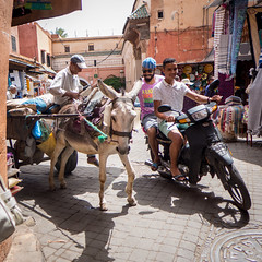 Donkey and mopeds @ Marrakech (PaulHoo) Tags: maroc marocco medina marrakech donkey transport moped smile squareformat square souk 2016 lightroom africa ilobsterit