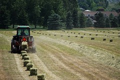 Trail of Bales (Let Ideas Compete) Tags: tractor field farm farming hay bales haybale haybales