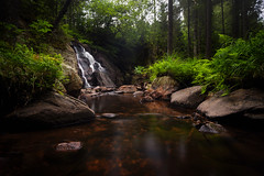 Hidden (Arvid Bjrkqvist) Tags: mist green fall nature water beautiful fog creek forest flow waterfall still rocks stream sweden stones secret low perspective calm foliage hidden ldse