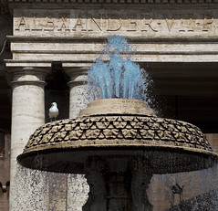 Fontana con gabbiano (Emanuele Usicco - www.emanueleusicco.it) Tags: roma vaticano acqua sanpietro monumenti gabbiano piazzasanpietro