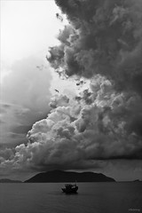The storm is coming (-clicking-) Tags: ocean sea sky blackandwhite bw seascape storm monochrome clouds skyscape landscape boats blackwhite cloudy dramatic atmosphere vietnam cloudscape nocolors blackwhitephotos cno vietnameselandscape